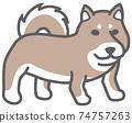 側身的黑色柴犬的插圖 74757263