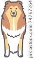 面對前面的牧羊犬的插圖 74757264