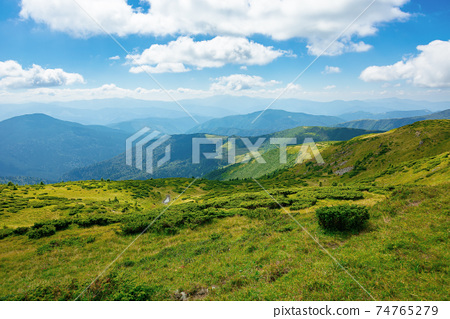 hills of the mountain rolling in to the distance. summer landscape of the black ridge in the eastern carpathians, ukraine. sunny scenery with fluffy clouds on the blue sky 74765279