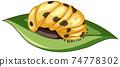 A ladybug (Pupa stage) on white background 74778302