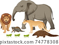 Group of wild african animal on white background 74778308