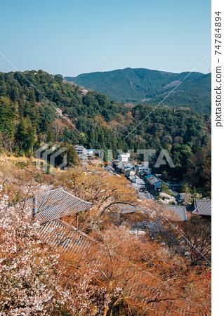 Panoramic view of Hasedera temple at spring in Nara, japan 74784894
