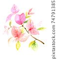 Watercolor drawing of a beautiful pink branch with leaves. For the design of cards and invitations 74791385