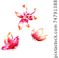 Watercolor drawing of red beautiful flowers performed in free style 74791388