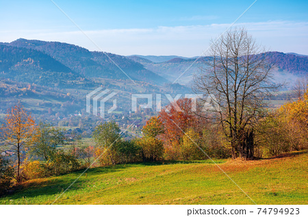 mountainous rural landscape in autumn. trees the edge of a hill in colorful foliage. sunny day with bright blue sky 74794923