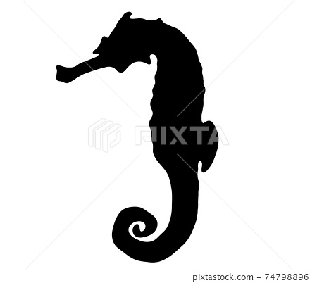 Cool seahorse silhouette 74798896