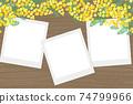 含羞草花相框 74799966