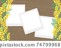 含羞草花相框 74799968
