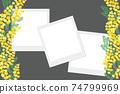 含羞草花相框 74799969