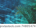 Trendy abstract botanical background, rough wall and fern 74805474