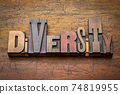 diversity - word abstract in wood type 74819955