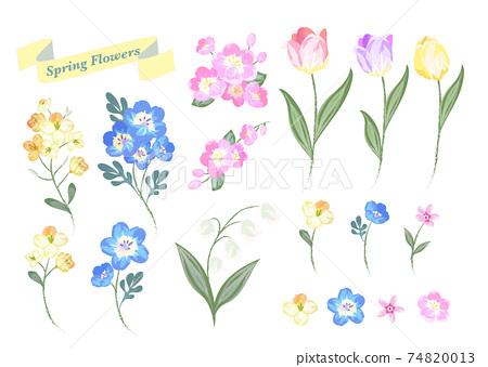 Spring flower watercolor material 74820013