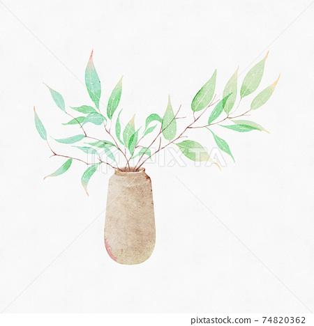 水彩植物盆栽 74820362