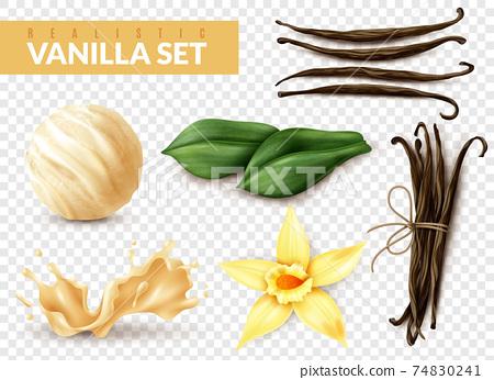 Vanilla Set Realistic Transparent 74830241