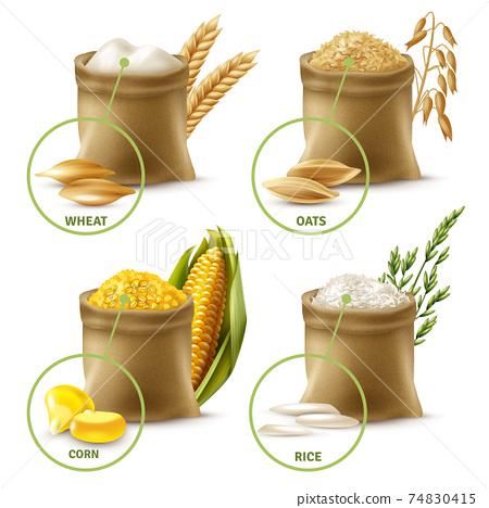 Agricultural Cereals Set 74830415