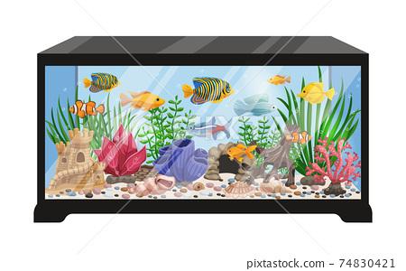 Aquarium Tank Cartoon Illustration 74830421