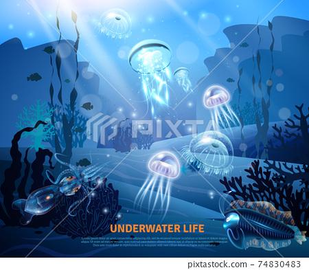 Underwater Life Background Light Poster 74830483