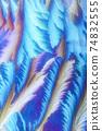 Window frost pattern 74832555