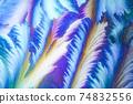 Window frost pattern 74832556