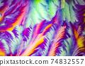 Window frost pattern 74832557