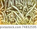 Window frost pattern 74832595
