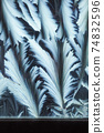 Window frost pattern 74832596