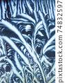 Window frost pattern 74832597