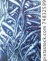 Window frost pattern 74832599
