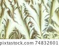 Window frost pattern 74832601