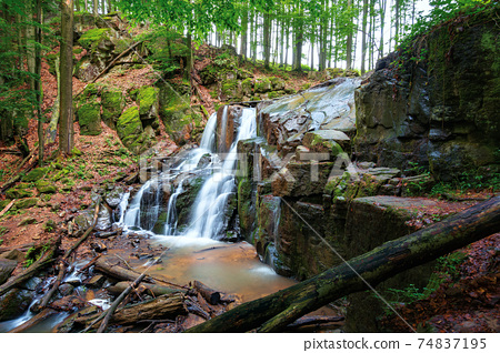 beautiful waterfall out of the rock. scenic green landscape with wild river in spring. concept of beauty and freshness in nature 74837195
