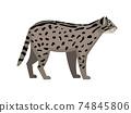 Endangered cat cartoon character 74845806