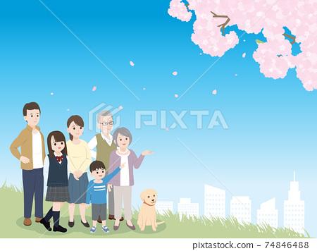 세 가족 꽃놀이 벚꽃을 바라 보는 풍경 일러스트 소재 74846488