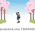 Female students, students, junior high and high school students, waving cherry blossoms, rows of cherry blossom trees, landscape illustration material 74846489