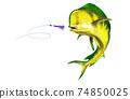 Yellow dolphin fish attacks bait sea swim squids skirt on white background isolate. 74850025