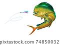 Orange - Yellow dolphin fish attacks bait sea swim squids skirt. Realistic illustration dolphin fish on white background isolate. 74850032
