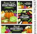 Fresh vegetable food chalkboard banners, cartoon 74852887