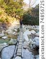 後山步道上的Gozaisho山步道橋 74856725