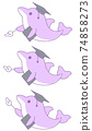 3 kinds of dolphins pointing to something (purple) 74858273