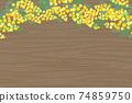 含羞草花相框 74859750