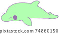 Bearded dolphin child (green) 74860150