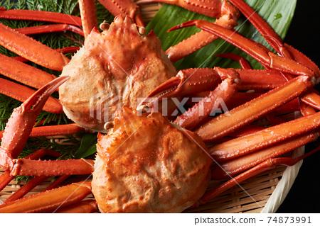 Boyle蟹蟹 74873991