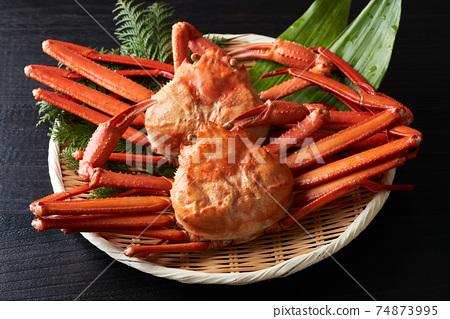 Boyle蟹蟹 74873995