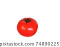 토마토 1 개 흰색 배경 74890225