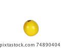 레몬 1 개 흰색 배경 74890404