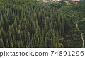 Aerial nobody nature landscape. Hike path at mountain forest on hill. Pine tree at green grass range 74891296
