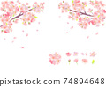Illustration of cherry blossoms drawn in watercolor 74894648