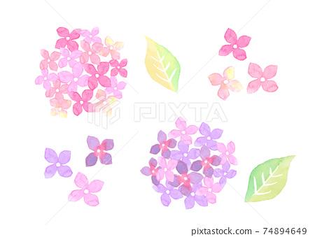 水彩畫的繡球花的插圖 74894649