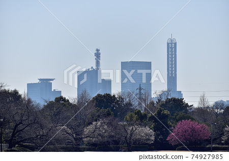 Omiya Daini Park and Shintoshin Building 74927985