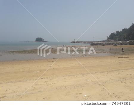 맛조개 잡는 바닷가 풍경 74947801