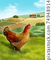 Hen and farm 74948914